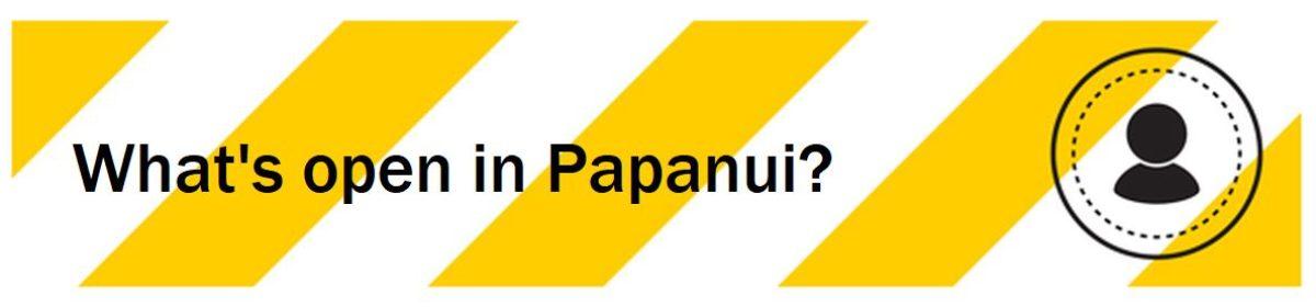 Think Papanui